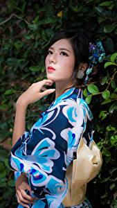 Bilder Asiaten Ast Pose Hand Kimono Brünette junge Frauen