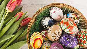 Hintergrundbilder Ostern Tulpen Ei Rot Design Blüte