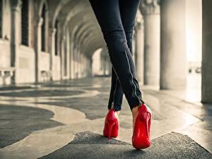 Hintergrundbilder Großansicht Bein High Heels Rot junge Frauen