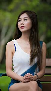 Fotos Asiaten Unscharfer Hintergrund Braunhaarige Sitzen Hand Blick Mädchens