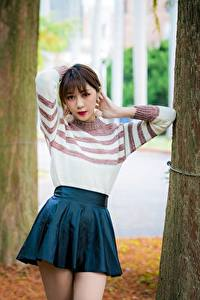 Bilder Asiatische Bokeh Braunhaarige Sweatshirt Rock Baumstamm junge Frauen