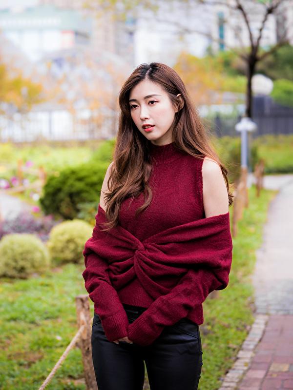 Bilder von Braune Haare Bokeh junge frau Asiatische Sweatshirt Blick 600x800 für Handy Braunhaarige unscharfer Hintergrund Mädchens junge Frauen Asiaten asiatisches Starren