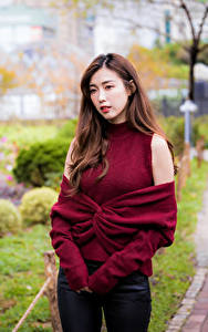 Fotos Asiatische Braune Haare Sweatshirt Blick Unscharfer Hintergrund junge Frauen