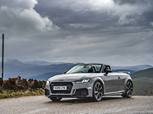 Fotos Audi Graues Roadster 2019 TT RS Autos