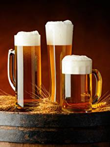 Hintergrundbilder Bier Fass Becher Drei 3 Schaum Ähren Lebensmittel