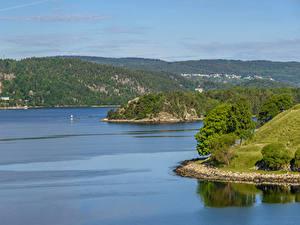 Fotos Norwegen Wald Bucht Hügel Oslo Fjord Natur