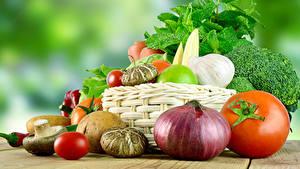 Fotos Gemüse Zwiebel Tomaten Knoblauch Pilze Weidenkorb