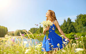 Bilder Sträuße Kamillen Blondine Kleid Lächeln
