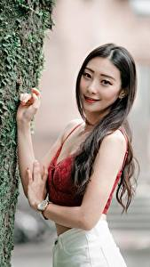 Image Asiatic Trunk tree Hands Bokeh Hair Staring young woman