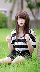 Fotos Asiaten Gras Unscharfer Hintergrund Braunhaarige Hand Sitzend junge frau