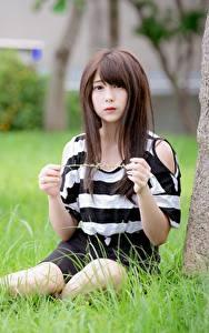 Fotos Asiaten Gras Unscharfer Hintergrund Braunhaarige Hand Sitzend
