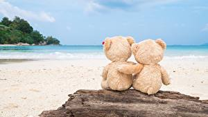 Fotos Teddybär Meer Liebe Umarmung Natur