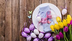 Hintergrundbilder Tulpen Ostern Bretter Ei Teller Schleife Blumen