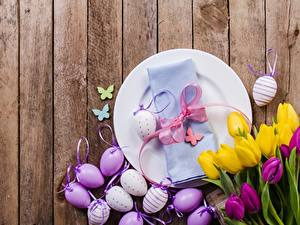 Hintergrundbilder Tulpen Ostern Bretter Eier Teller Schleife Blumen