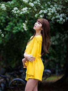 Hintergrundbilder Asiatisches Bokeh Pose Kleid Hand Braune Haare junge Frauen