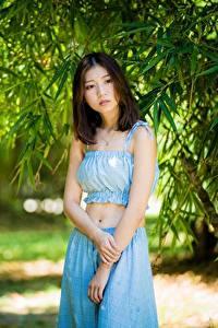 Fotos Asiaten Ast Posiert Hand Braune Haare Niedlich