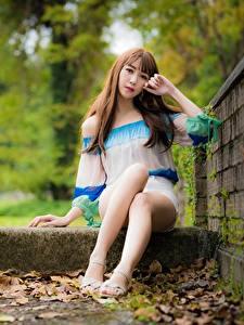 Fotos Asiatische Blattwerk Braune Haare Hand Sitzend Bein Mädchens