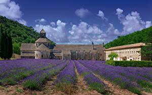 Hintergrundbilder Frankreich Tempel Kloster Acker Lavendel Senanque Abbey Städte Natur