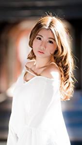 Fotos Asiatische Unscharfer Hintergrund Braune Haare Blick Nett Mädchens