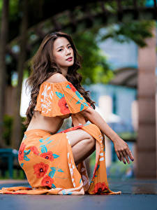 Fotos Asiatisches Braunhaarige Sitzend Bokeh junge Frauen
