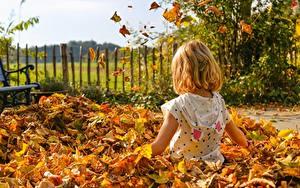 Hintergrundbilder Herbst Blatt Sitzt Kleine Mädchen Kinder