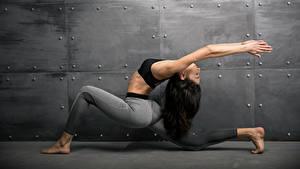 Fotos Fitness Gymnastik Braune Haare Körperliche Aktivität Hand junge Frauen Sport