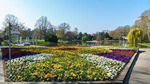 Bilder Deutschland Park Teich Rasen Botanischer Garten Karlsruhe