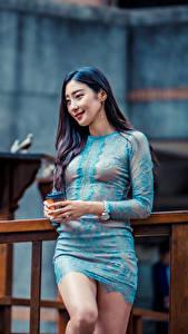 Bilder Asiatisches Posiert Kleid Lächeln Mädchens