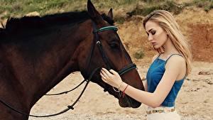 Hintergrundbilder Hauspferd Blondine Braun Hand Mädchens Tiere