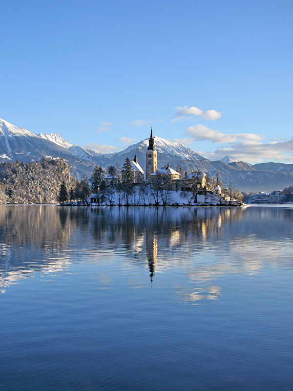 Photo Alps Slovenia Lake Bled Bled Castle Nature Winter 600x800