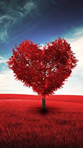 Papéis de parede Dia dos Namorados Coração árvores Naturaleza