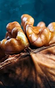 Bilder Makrofotografie Großansicht Nussfrüchte Walnut Lebensmittel