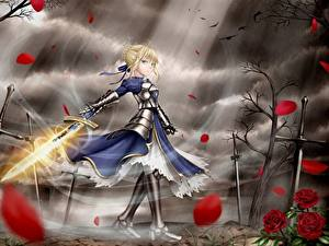 Fotos Fate: Stay Night Krieger Schwert Kleid Blondine Rüstung Anime Mädchens