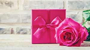 Hintergrundbilder Rosen Rosa Farbe Geschenke Schleife
