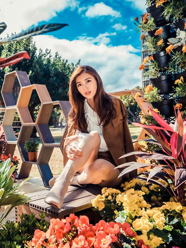 Foto Braune Haare junge frau Asiatische Sitzend Blick 600x800 für Handy Braunhaarige Mädchens junge Frauen Asiaten asiatisches sitzt sitzen Starren