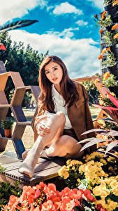 Fotos Asiatische Braune Haare Sitzend Blick junge frau