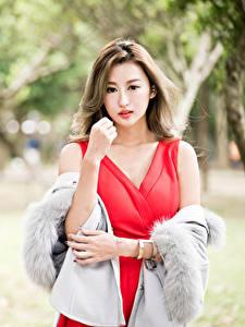 Fotos Asiatisches Unscharfer Hintergrund Kleid Rot Hand Braunhaarige Starren Mädchens