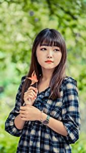 Fotos Asiaten Unscharfer Hintergrund Kleid Hand Braune Haare