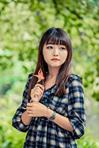 Fotos Asiaten Unscharfer Hintergrund Kleid Hand Braune Haare junge frau