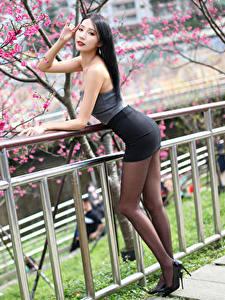 Bilder Asiatisches Blühende Bäume Pose Bein Rock Blick Mädchens