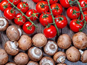 Bilder Tomate Pilze Lebensmittel