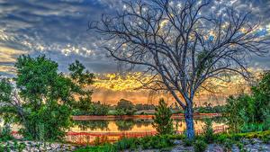 Bilder USA Sonnenaufgänge und Sonnenuntergänge See Himmel Kalifornien Bäume Wolke HDR Lake Marchado Natur
