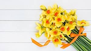 Hintergrundbilder Narzissen Blumensträuße Gelb Blüte