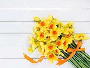 Hintergrundbilder Narzissen Sträuße Gelb Blumen