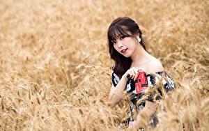 Hintergrundbilder Felder Asiatische Unscharfer Hintergrund Blick Brünette junge Frauen