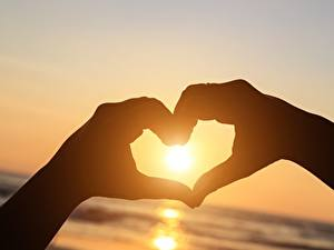 Image Heart Sun Hands Silhouette Nature
