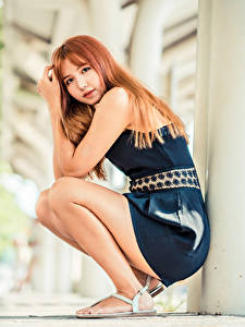 Pictures Asiatic Sitting Dress Glance Bokeh Redhead girl Girls