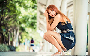 Fotos Asiaten Sitzend Kleid Blick Bokeh Rotschopf Mädchens