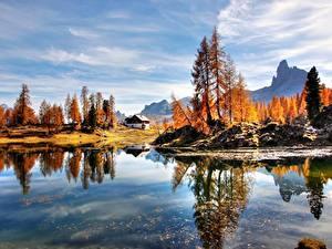 Bilder Italien See Herbst Alpen Bäume Dolomites Natur