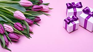 Pictures Tulips Gifts Box Violet flower